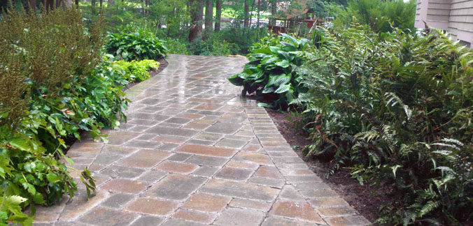 walkway with plant bed on either side